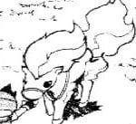 41. Kontra Ponyta