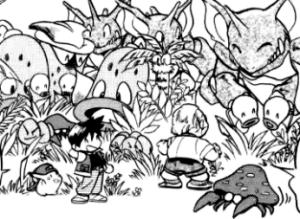 Strefa safari